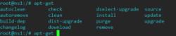 Autocompletarea comenzilor din consola și sub userul root, Autocomplit-bash-root